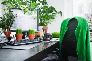 creative workplace with plants